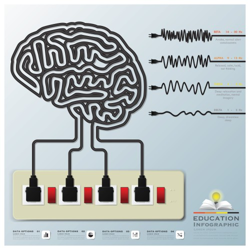 Mind Modulations Brainwave Education Infographic Design Template